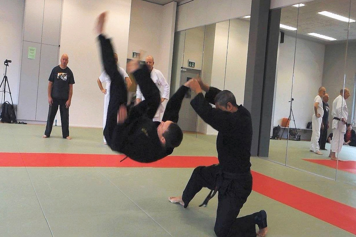 Foto: Hapkimudo Training in Wien